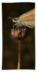 Hand Towel featuring the photograph European Skipper by Jouko Lehto