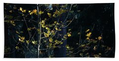 Bath Towel featuring the photograph Evening Light In November by Ronda Broatch