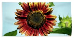 Evening Sun Sunflower 2016 #1 Hand Towel