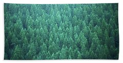 Evergreen Hand Towel by Laurie Stewart