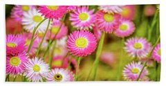 Hand Towel featuring the photograph Everlasting Daisies, Kings Park by Dave Catley