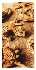 Exhibition In Prehistoric Art Bath Towel