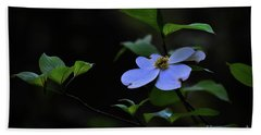 Hand Towel featuring the photograph Exquisite Light by Skip Willits