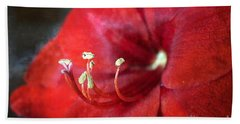 Bath Towel featuring the photograph Extrovert Red Floral Abstract by Ella Kaye Dickey