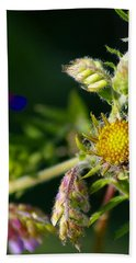 Eye Candy From The Garden Hand Towel