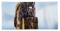 Eye On The Prize - Great Gray Owl Hand Towel