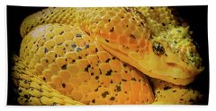 Bath Towel featuring the photograph Eyelash Viper by Karen Wiles