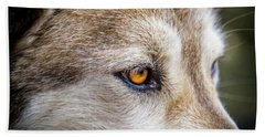 Bath Towel featuring the photograph Eyes Of The Gray Wolf by Teri Virbickis