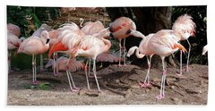Fabulous Flamingos Bath Towel