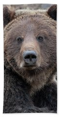 Face Of The Grizzly Bath Towel