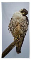 Falcon With Cocked Head Bath Towel