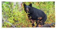 Fall Bear Bath Towel by Scott Warner