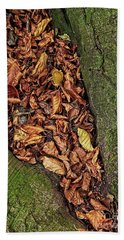 Fall Beech Tree Leaves Hand Towel
