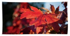 Fall Color 5528 23 Hand Towel by M K  Miller