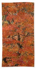 Fall Color Bath Towel