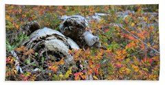 Bath Towel featuring the photograph Fall Color On The Beach by Ronda Broatch