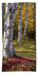 Fall Colors Hand Towel