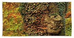 Fall Colors In Nature Hand Towel