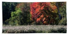 Fall Foliage Marsh Hand Towel by Smilin Eyes  Treasures