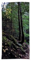Fall Forest Bath Towel