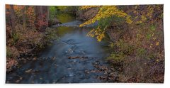 Fall In Michigan 2 Hand Towel