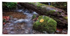 Fall In The Woods Bath Towel