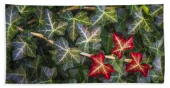 Hand Towel featuring the photograph Fall Ivy Leaves by Adam Romanowicz