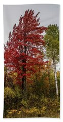 Bath Towel featuring the photograph Fall Maple by Paul Freidlund