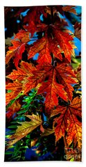 Fall Reds Bath Towel by Robert Bales