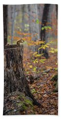 Fall Scene Hand Towel