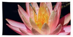 Familiar Bluet Damselfly And Lotus 2 Hand Towel