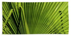 Fan Palm View 2 Hand Towel by James Gay