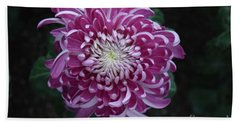 Fancy Chrysanthemum In Pink Hand Towel