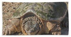 1013 - Fargo Road Turtle Bath Towel
