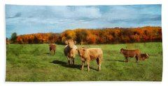 Farm Field And Brown Cows Hand Towel