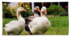 Farm Geese Hand Towel
