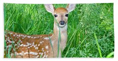 Fawn In Tall Grass Hand Towel