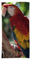Feathered Rainbow Hand Towel