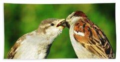 Feeding Baby Sparrow 3 Hand Towel by Judy Via-Wolff