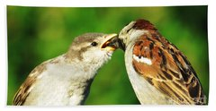 Bath Towel featuring the photograph Feeding Baby Sparrow 3 by Judy Via-Wolff