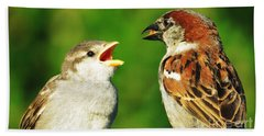 Bath Towel featuring the photograph Feeding Baby Sparrows 2 by Judy Via-Wolff