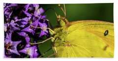 Bath Towel featuring the photograph Feeding Butterfly by Jay Stockhaus