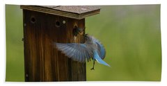 Feeding Time For Bluebirds Bath Towel