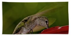 Hand Towel featuring the photograph Female Anna's Hummingbird H40 by Mark Myhaver