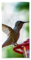 Hand Towel featuring the photograph Female Anna's Hummingbird V24 by Mark Myhaver