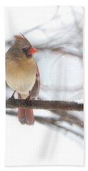 Female Cardinal In Snow Bath Towel
