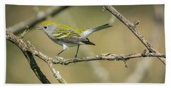 Female Chestnut-sided Warbler Bath Towel