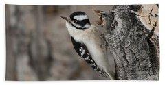 Female Downey Woodpecker Hand Towel