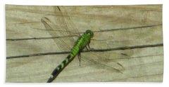 Female Eastern Pondhawk Dragonfly Bath Towel