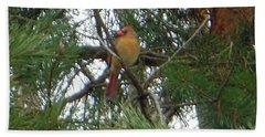 Female Northern Cardinal Hand Towel